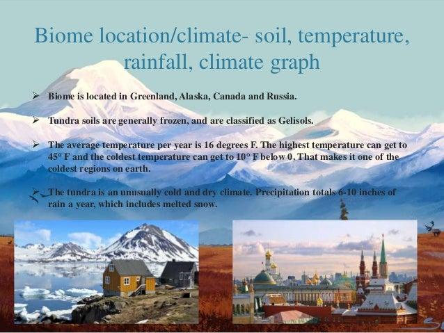 high latitude tundra period 4