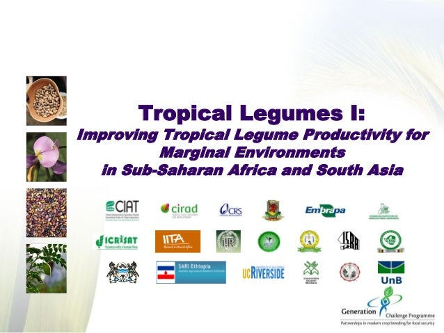 Tropical Legumes I: Improving Tropical Legume Productivity for Marginal Environments in Sub-Saharan Africa and South Asia