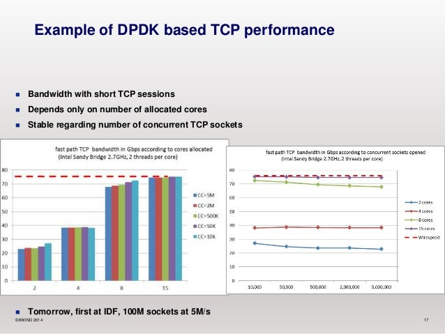 High Performance Networking Leveraging the DPDK and Growing