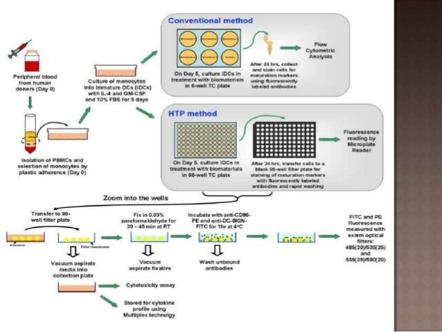 High throughput screening hts assays uses and formats