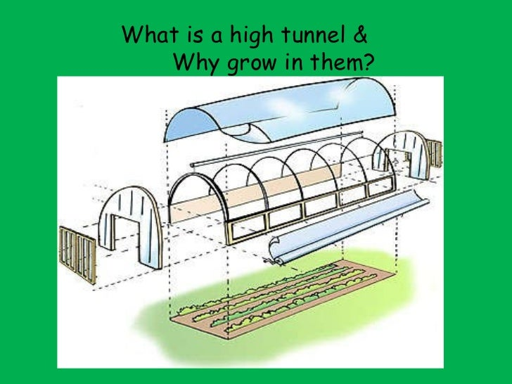 What is a high tunnel &  Why grow in them?