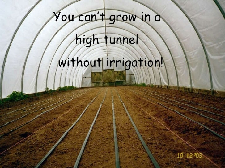 You can't grow in a  high tunnel  without irrigation!
