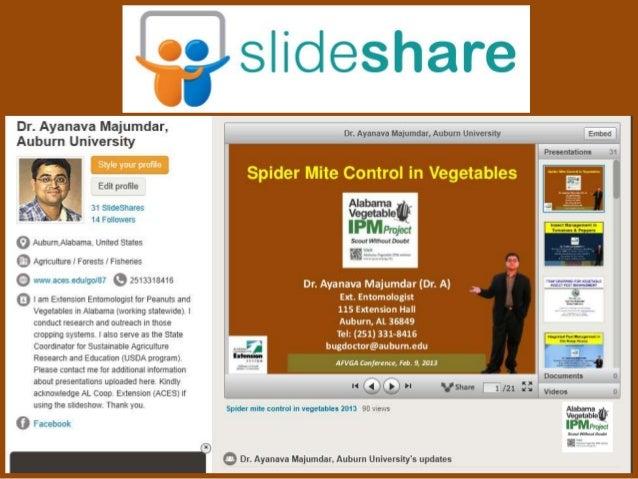 Bug Doctor Pest Control - Pest Control - Grass Valley, CA ...