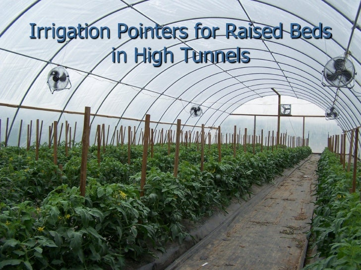 Irrigation Pointers for Raised Beds          in High Tunnels
