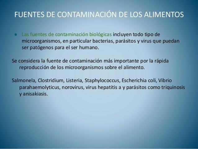 Higiene alimentaria y manipulaci n de alimentos - Fuentes de contaminacion de los alimentos ...