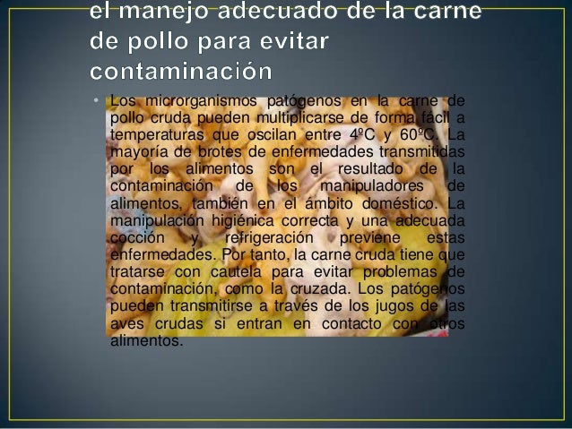 Higiene de carne de pollo aves y - Carne manipulacion de alimentos ...