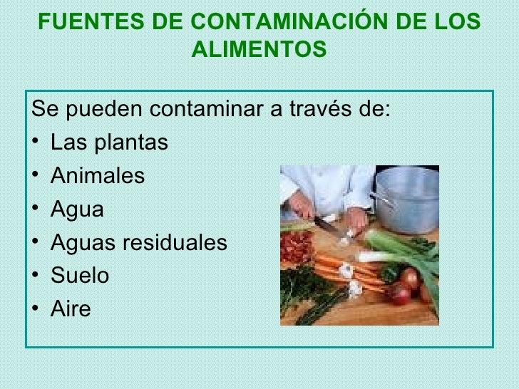 Higiene y manipulacion de alimentos fenahoven - Fuentes de contaminacion de los alimentos ...