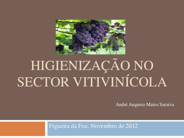 HIGIENIZAÇÃO NOSECTOR VITIVINÍCOLA                            André Augusto Matos Saraiva    Figueira da Foz, Novembro de ...