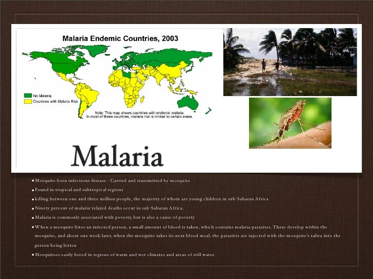 Malaria •Mosquito born infectious disease - Carried and transmitted by mosquito •Found in tropical and subtropical regions...