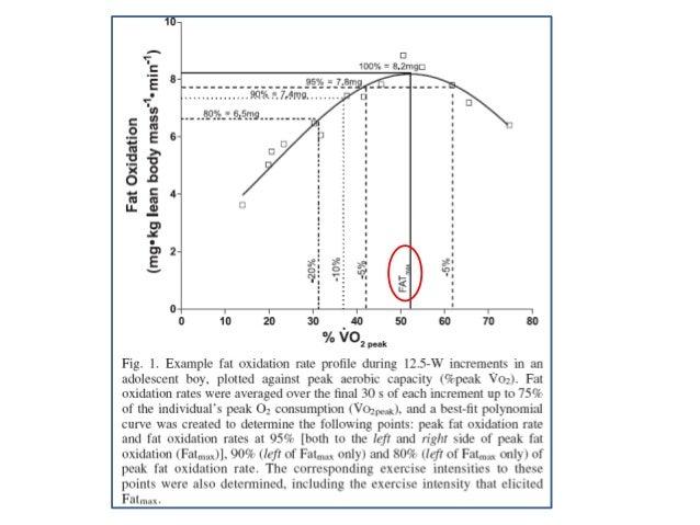 """Onde os """"outros"""" param, o HIIT começa: Exemplo do 100% do VO2max Teste Progressivo Máximo em Esteira (por exemplo)  100% V..."""