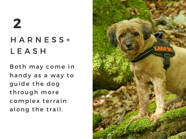 2 H A R N E S S + L E A S H Both may come in handy as a way to guide the dog through more complex terrain along the trail.