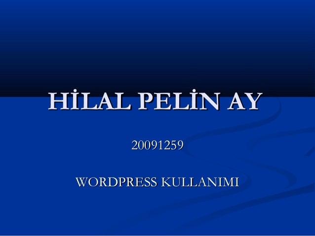 HİLAL PELİN AYHİLAL PELİN AY 2009125920091259 WORDPRESS KULLANIMIWORDPRESS KULLANIMI