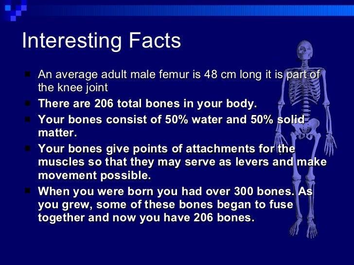 Hilary Irvine Skeletal System