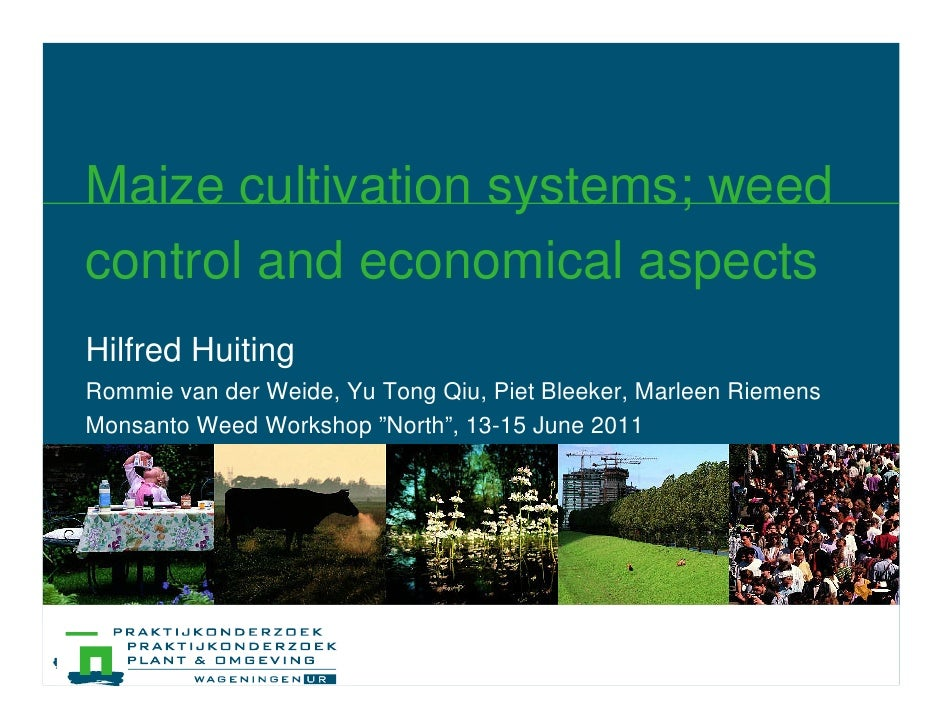 Maize cultivation systems; weedcontrol and economical aspectsHilfred HuitingRommie van der Weide, Yu Tong Qiu, Piet Bleeke...