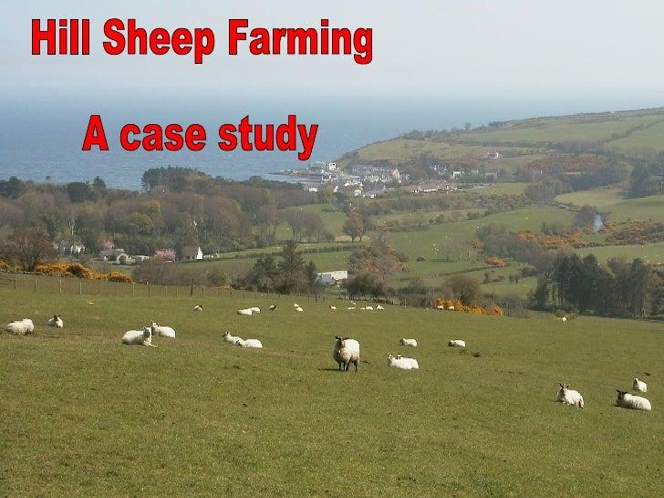 Hill Sheep Farming A case study