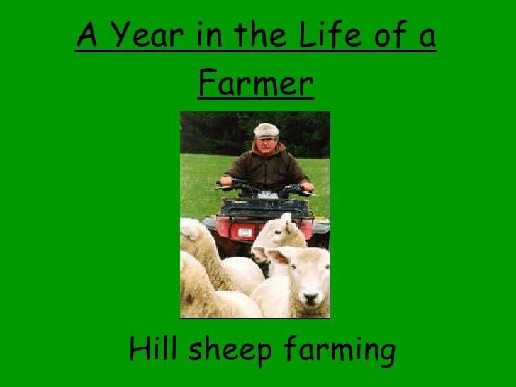 A Year in the Life of a Farmer <ul><li>Hill sheep farming </li></ul>