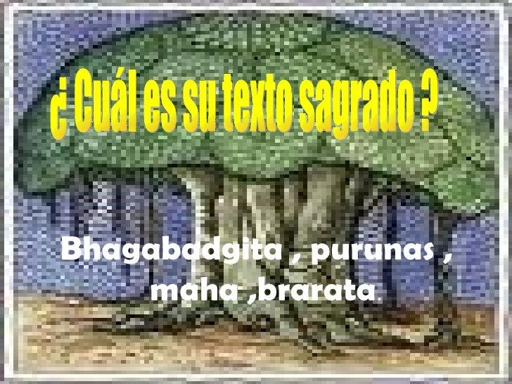 . <ul><li>Bhagabadgita , purunas , maha ,brarata . </li></ul>¿ Cuál es su texto sagrado ?