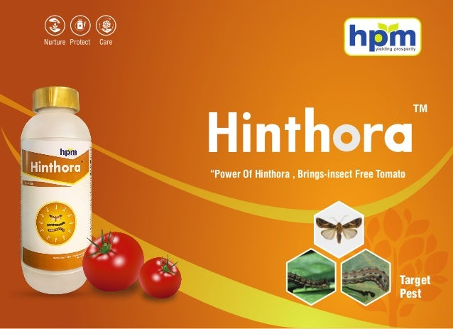 """H TM Target Pest """"Power Of Hinthora , Brings-insect Free Tomato"""