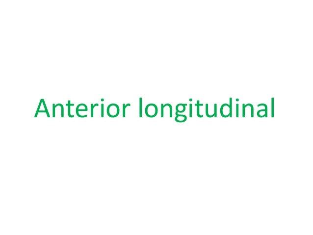 Lateral transverse
