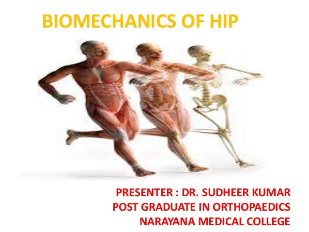 BIOMECHANICS OF HIP  PRESENTER : DR. SUDHEER KUMAR POST GRADUATE IN ORTHOPAEDICS NARAYANA MEDICAL COLLEGE