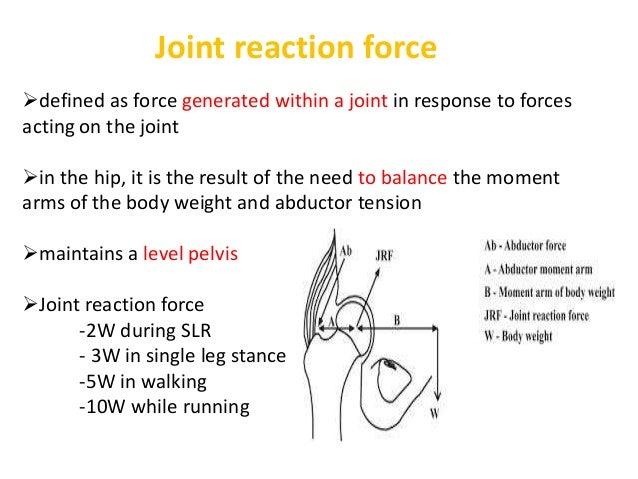 Hip biomechanics