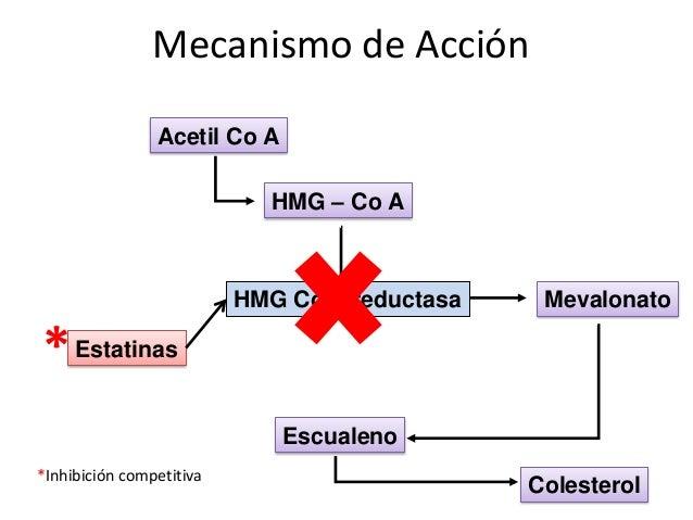 Acetil Co A HMG – Co A Mevalonato Escualeno Colesterol Estatinas HMG Co A reductasa *Inhibición competitiva * Mecanismo de...