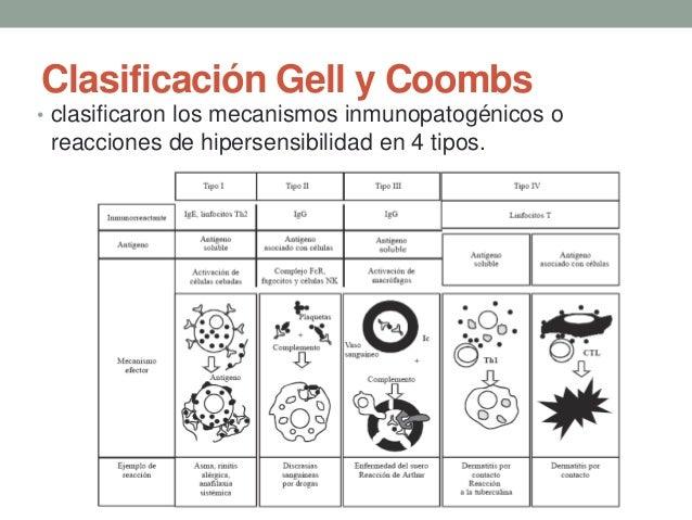 REACCIONES DE GELL Y COOMBS EPUB
