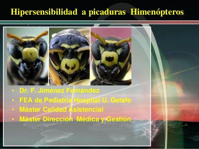 Hipersensibilidad a picaduras Himenópteros  • • • •  Dr. F. Jiménez Fernández FEA de Pediatría Hospital U. Getafe Máster C...