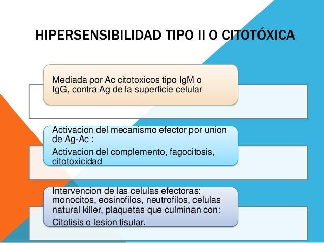 HIPERSENSIBILIDAD TIPO II O CITOTÓXICA Mediada por Ac citotoxicos tipo IgM o IgG, contra Ag de la superficie celular  Acti...