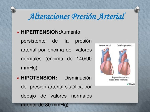 septimo reporte de la Hipertension arterial - presion arterial