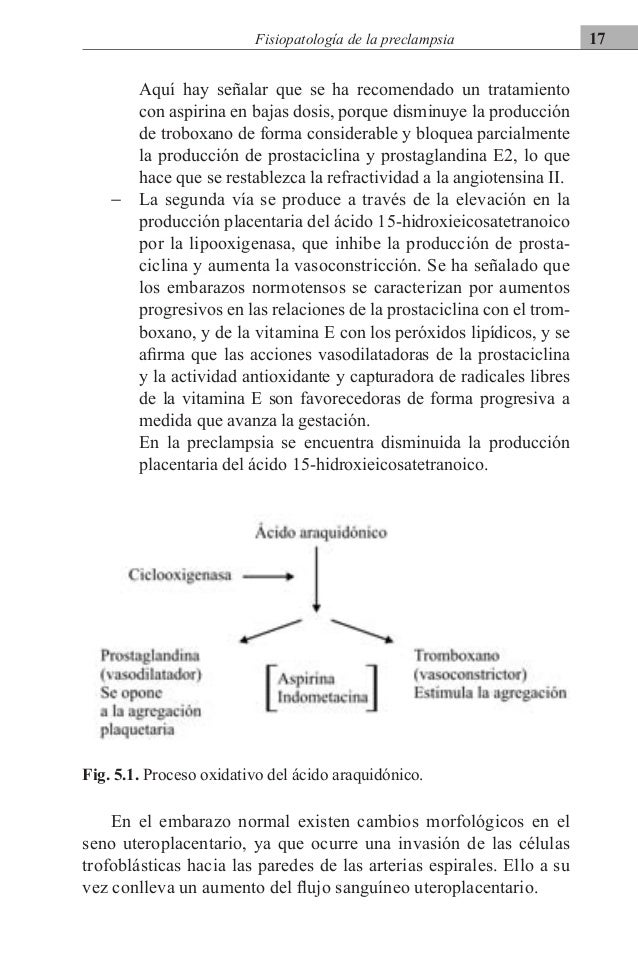 Hipertension arterial y embarazo