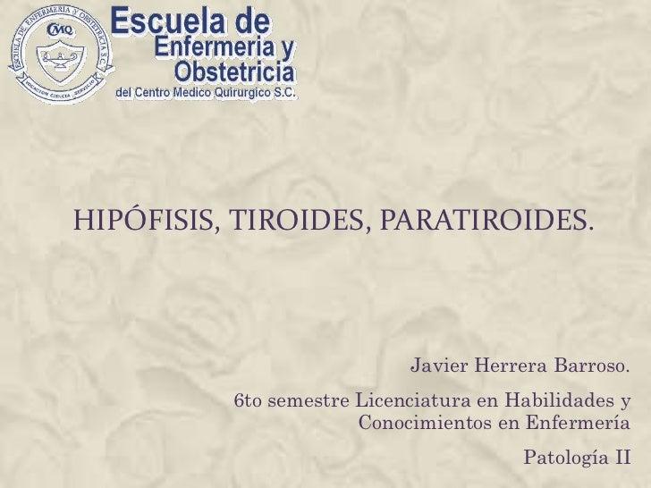 Hipófisis, tiroides, paratiroides.<br />Javier Herrera Barroso.<br />6to semestre Licenciatura en Habilidades y Conocimien...