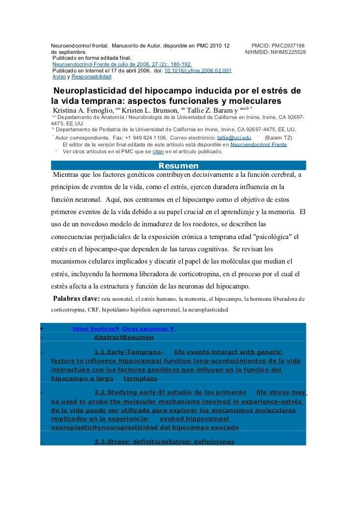 Hipocampo y neuroplasticidad11