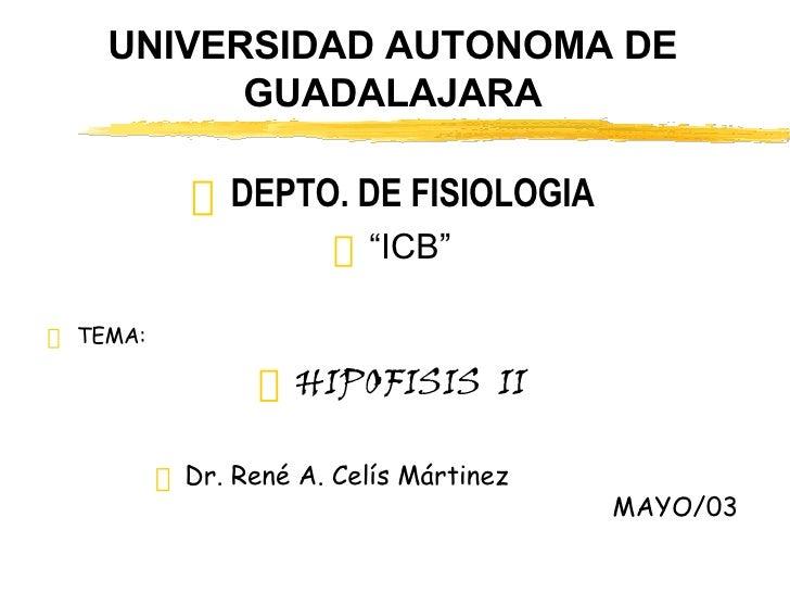 """UNIVERSIDAD AUTONOMA DE GUADALAJARA <ul><li>DEPTO. DE FISIOLOGIA </li></ul><ul><li>"""" ICB"""" </li></ul><ul><li>TEMA: </li></u..."""