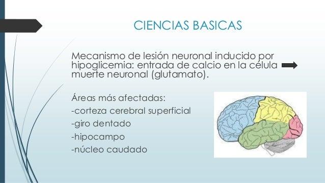 HIPOGLUCEMIA NEONATAL PRESETACION