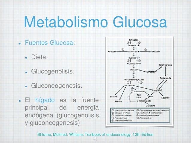 Abordaje diagnostico y tratamiento Hipoglucemia Slide 3