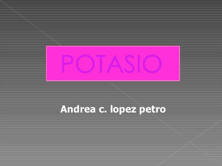 Andrea c. lopez petro