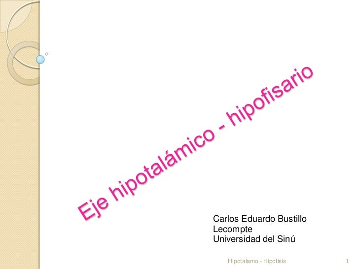 Carlos Eduardo BustilloLecompteUniversidad del Sinú   Hipotalamo - Hipofisis   1
