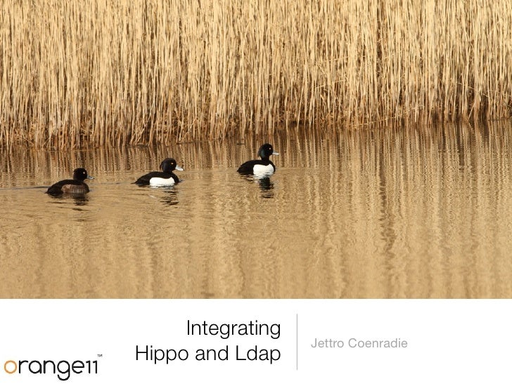 Integrating                   Jettro CoenradieHippo and Ldap
