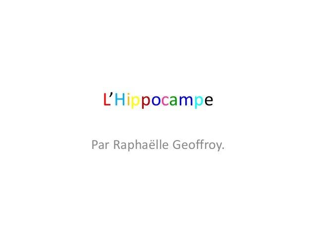 L'Hippocampe Par Raphaëlle Geoffroy.