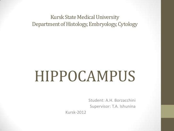 Kursk State Medical UniversityDepartment of Histology, Embryology, CytologyHIPPOCAMPUS                           Student: ...