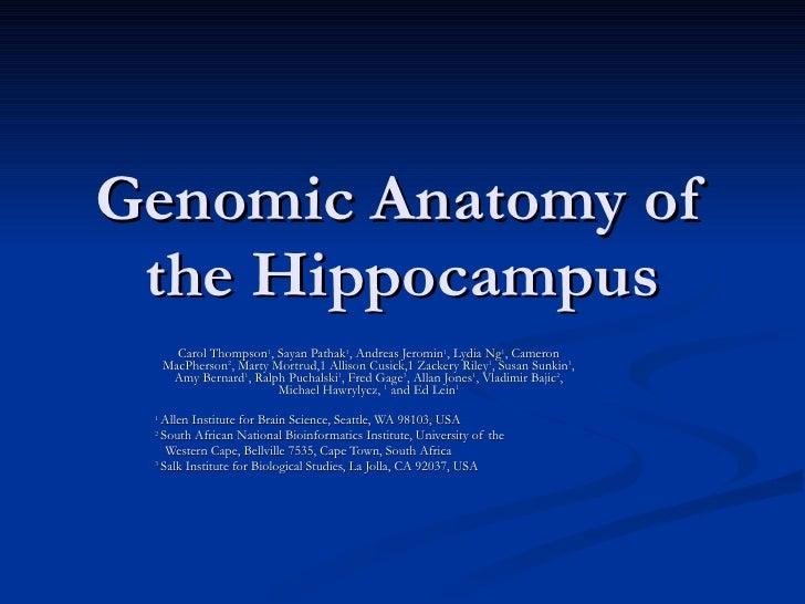 Genomic Anatomy of the Hippocampus Carol Thompson 1 , Sayan Pathak 1 , Andreas Jeromin 1 , Lydia Ng 1 , Cameron MacPherson...