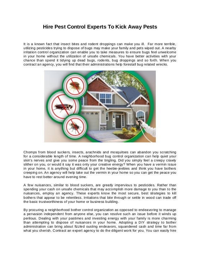 Hire pest control experts to kick away pests