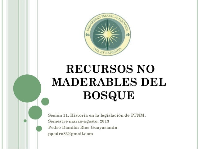 RECURSOS NO MADERABLES DEL BOSQUE Sesión 11. Historia en la legislación de PFNM. Semestre marzo-agosto, 2013 Pedro Damián ...