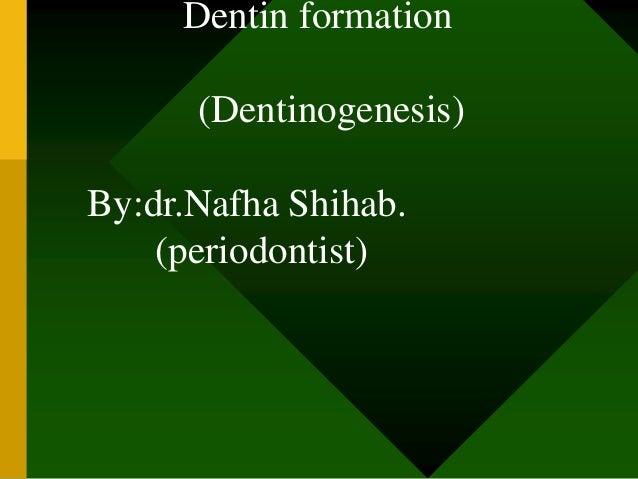 Dentin formation (Dentinogenesis) By:dr.Nafha Shihab. (periodontist)