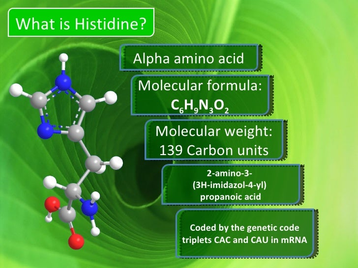 amino acid therapy for weight loss histidine 17260