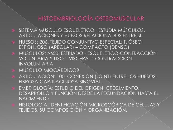    SISTEMA MÚSCULO ESQUELÉTICO: ESTUDIA MÚSCULOS,    ARTICULACIONES Y HUESOS RELACIONADOS ENTRE SI.   HUESOS: 206. TEJID...