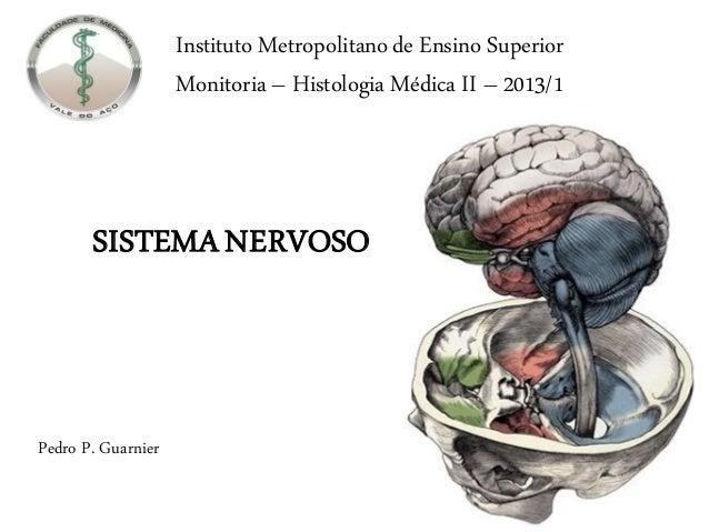 Instituto Metropolitano de Ensino Superior                    Monitoria – Histologia Médica II – 2013/1       SISTEMA NERV...