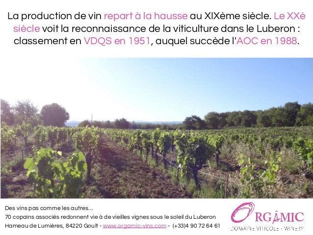 Des vins pas comme les autres… 70 copains associés redonnent vie à de vieilles vignes sous le soleil du Luberon Hameau de ...