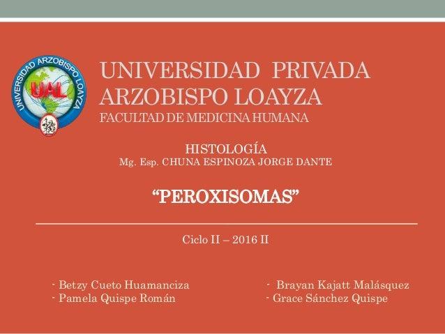 - Betzy Cueto Huamanciza - Brayan Kajatt Malásquez - Pamela Quispe Román - Grace Sánchez Quispe UNIVERSIDAD PRIVADA ARZOBI...